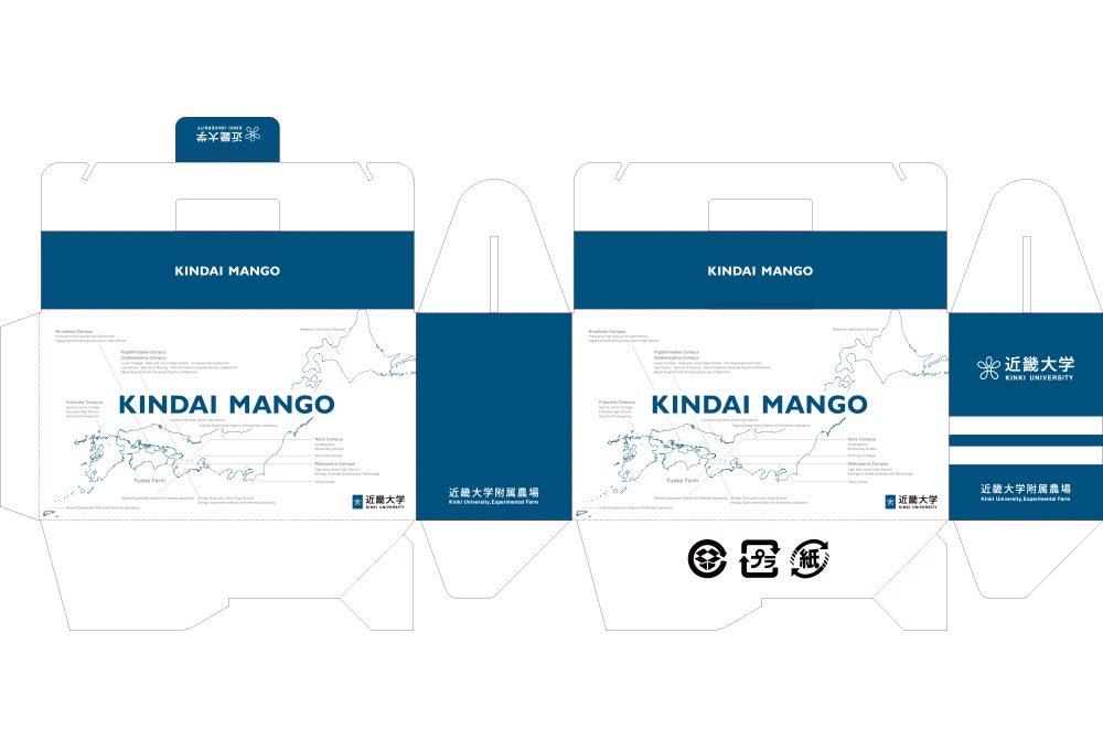 02_kindai_mango