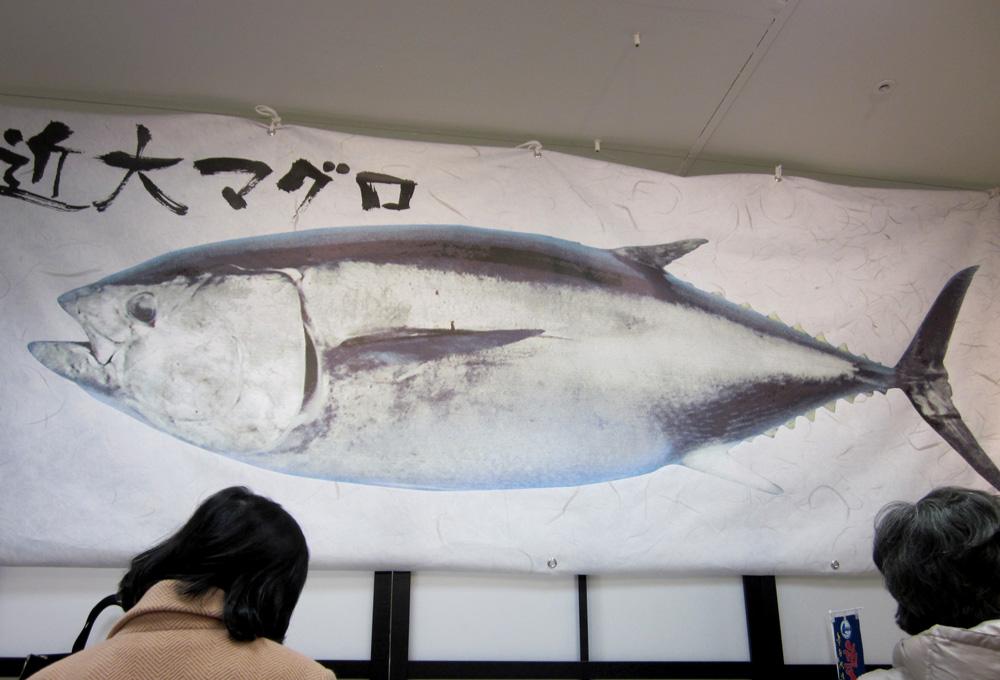 06_kindai_daigakuhaoishi
